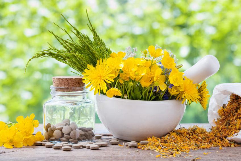 Őrizze meg egészségét gyógynövényekkel!